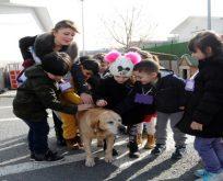 Çocuklar hayvan dostlarıyla buluştu