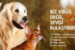 Ekol'den, korona günlerinde hayvanları unutmayın çağrısı