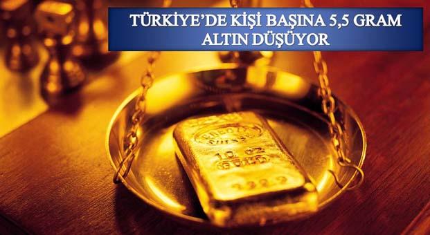Türkiye'dekişi başına 5,5gram altın düşüyor