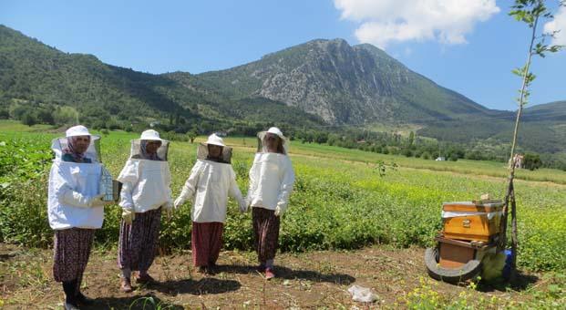 Filizlerin Mucizeleri Projesi'nin Kadın Çiftçileri ve Aileleri şimdi de karabuğday çiçeklerini arılarla buluşturdu