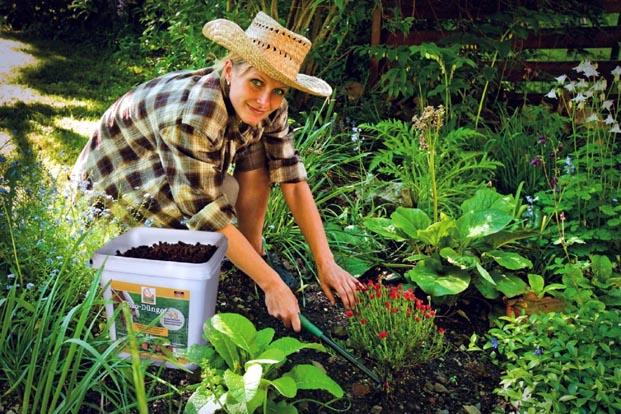 Yaza girmeden bahçe bakımınızı yapın