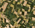 Planet ve BASF'den Avrupa'da tarımı destekleyecek teknoloji iş birliği