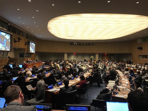 Darüşşafaka Birleşmiş Milletler'de tanıtıldı
