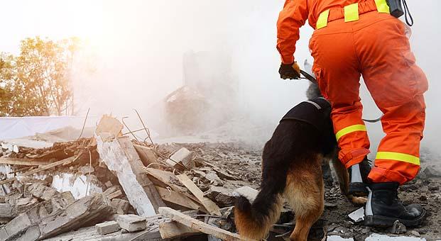 IoT çözümleri doğal afetlerde hayat kurtarıyor