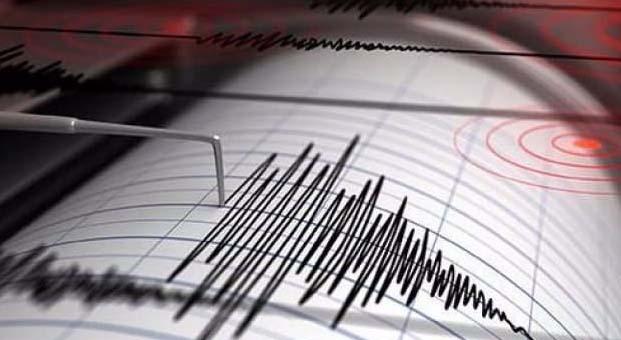 Muğla 5.0'lık depremden sonra 55 defa daha sallandı