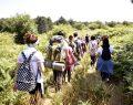 DOSTUM'un doğa yürüyüşleri İnegöl'e can veriyor