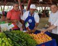 Üretimden ekolojik pazara, organik tarımın öncü ili Kayseri