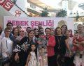 Erasta Antalya'da 3. Bebek Şenliği başlıyor