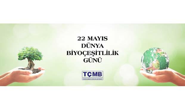 Türk çimento sektörü 350 binden fazla fidan dikti