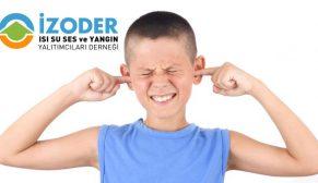 Levent Pelesen: Sağlığımızı korumak için gürültüye karşı önlem almalıyız