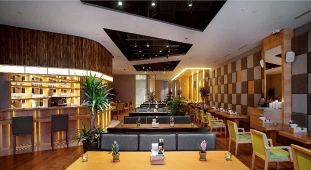 Hotelya 25 ülkede 500'ün üzerinde otelin hayalini gerçekleştirdi