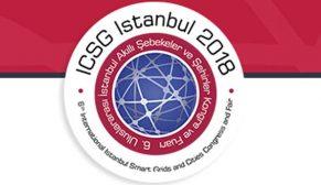 Enerji devleri ICSG 2018 için İstanbul'da buluşuyor
