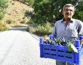 İzmir'den Fas'a yol olur