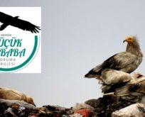 Vaillant'ın desteklediğiKüçük Akbabaları Koruma Projesi hızla devam ediyor