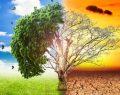 SOSİAD küresel ısınmanın hızını kesecek AB Projesini tanıttı