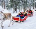 Prontotour ile karlar ülkesi Laponya'ya yolculuk