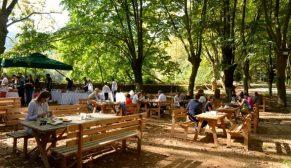 MESA Orman'da brunch etkinliği