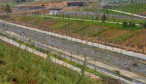 TOKİ Kayaşehir Millet Bahçesi ile millet bahçesine ait sosyal donatılar için ihaleye çıkıyor