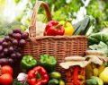 Organik tarım dünya nüfusunu besler
