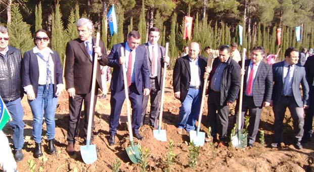Peli daha yeşil bir Türkiye için geleceğe nefes oldu