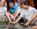 SEA LIFE, Madame Tussauds ve LEGOLAND Discovery Centre biletleri artık Biletix'te satışta