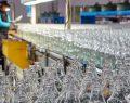 Şişecam'ın Türkiye'deki cam ambalaj üretim kapasitesi 1,2 milyon tona ulaştı