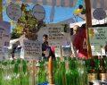 Şişecam Topluluğu 6 milyar cam şişeyeeşdeğer atığı geri dönüşüme kazandırdı