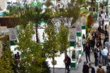 Süs bitkileri sektörü Kasım ayındaki 12'nci buluşmayı bekliyor