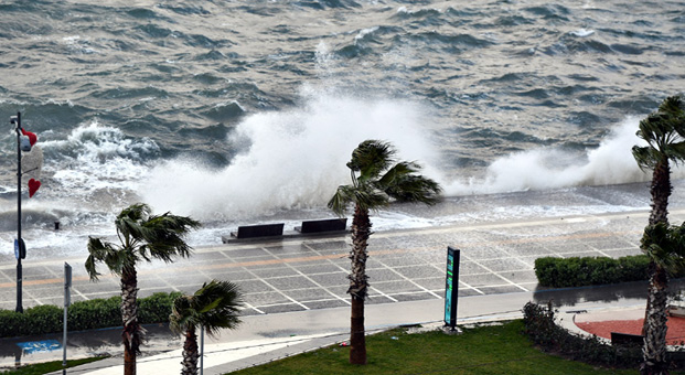İzmir Büyükşehir Belediyesi, küresel iklim değişikliğinin olumsuz etkilerine karşı neler yapıyor?