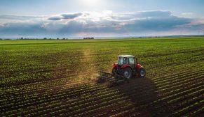 Tarım arazileri alternatif yatırım aracına dönüşüyor
