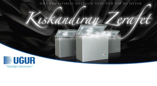 Kıskandıran zerafet UED 210 Gümüş A++ satışa sunuldu