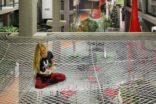 XL Mimarlık+Mühendislik'eThe DNA Paris Design Awards 2020'den iki ödül birden