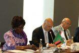 Konutta Afrika fırsatı: Zambiya'dan 1.3 milyon konutluk teklif
